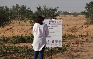 wadis_mar_photo