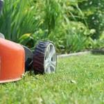 servizi-giardinaggio-mestre